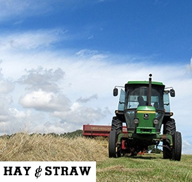 /Hay and Straw